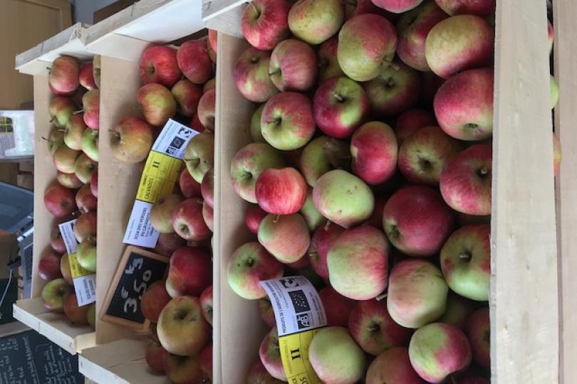 Pommes Verger de Roncheville
