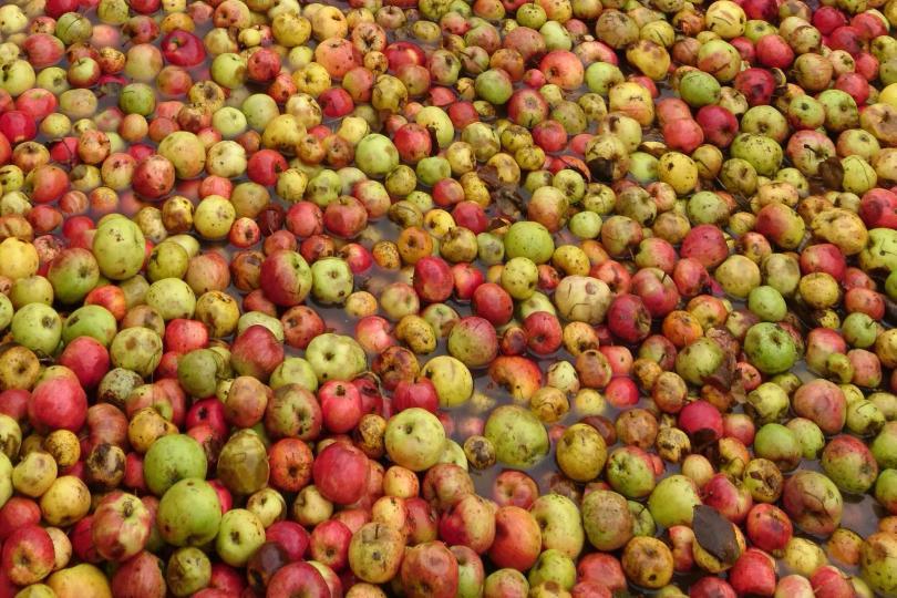 Pommes Manoir du Val